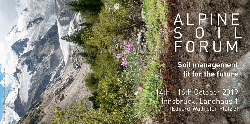 Alpine Soil Forum